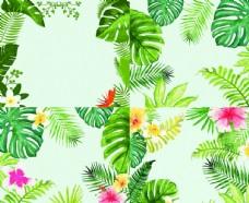 彩色植物花卉