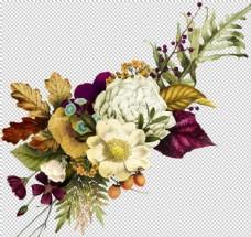 复古PNG手绘花朵