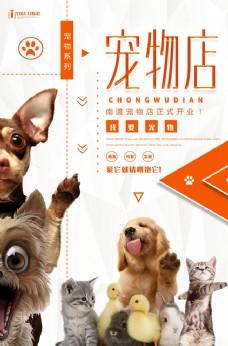 創意寵物美容店