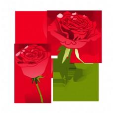 情人节玫瑰花花枝