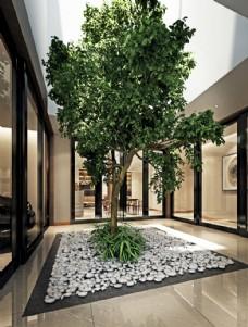 室内绿植文化3D模型
