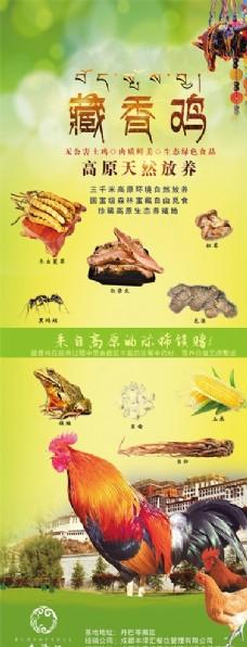 藏香雞豎式宣傳文件 帶分層