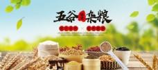 五谷杂粮食品海报