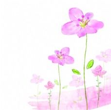 粉色花朵背景图