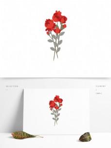花开植物叶子树枝红色花朵
