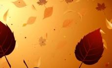 唯美深秋枫叶背景