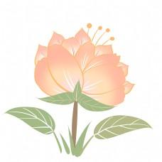 黄色花瓣棕色花蕊向日葵