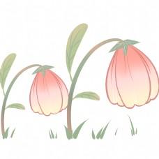 粉色多层花蕊可爱