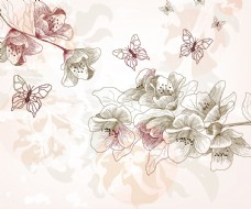 线条蝴蝶花卉