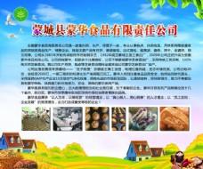 蒙城农委会活动展板