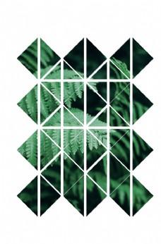 小清新绿色树叶装饰画