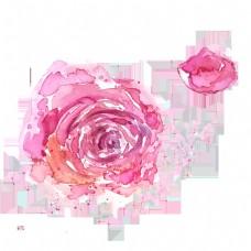 卡通玫瑰花免抠图下载