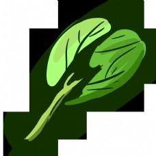 一片性绿色蔬菜青菜