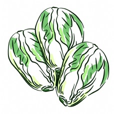 三颗线性绿色蔬菜青菜