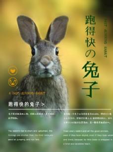 清新励志兔子海报