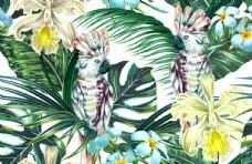 热带风格印花