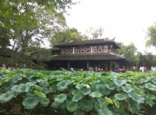 苏州 园林 猴子林 荷花 池