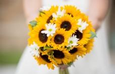 向日葵捧花