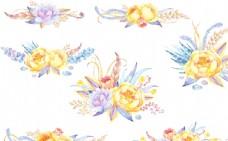 水彩 手绘 花卉 花朵 植物