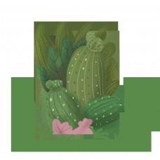 手绘可爱 植物仙人掌  儿童插画 绘本