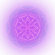 漂浮几何图形花型淡紫色