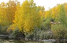 秋天的色彩