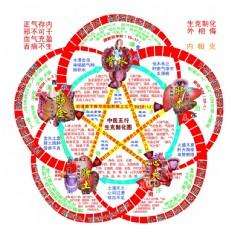 五行制化图