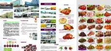 紫燕 百味鸡折页内