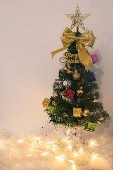 圣诞节的圣诞树商用摄影