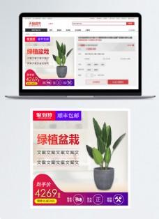 绿色盆栽促销淘宝主图