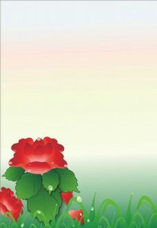 大红花背景图