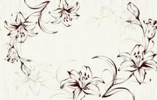 手绘线条百合花