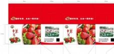 草莓包装礼盒彩箱