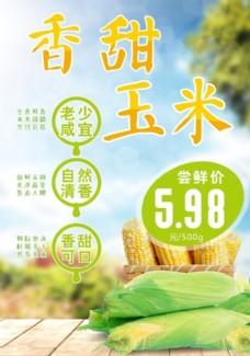 新鲜玉米海报宣传