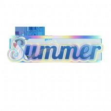 五颜六色的与海鸥样式的夏天简单的字体设计