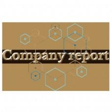 豪华和黄金公司报告字体与几何背景
