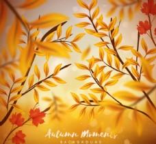 秋季树枝背景
