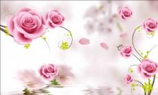 水影玫瑰背景