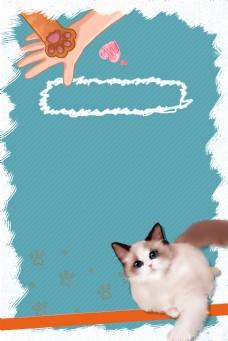 猫猫狗狗宠物小动物领养宠物店猫爪布偶猫