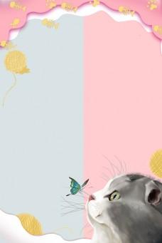 猫猫狗狗宠物小动物领养宠物店小鱼干毛线球