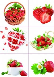 059草莓