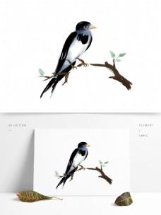 春分可爱水墨国画小燕子飞鸟类飞翔雨燕动物