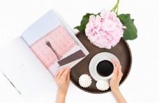 绣球花和咖啡