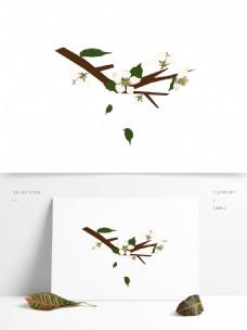 梨花白色花朵花枝花卉手绘简约风7