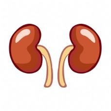 手绘卡通人体器官肾脏矢量免抠素材