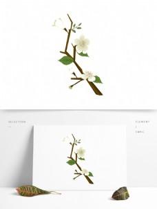 春天元素梨花白色花朵花枝花卉手绘简约风4
