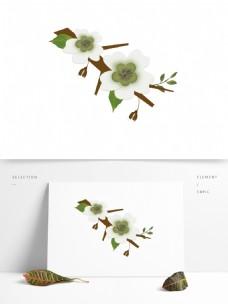 梨花白色花朵花枝花卉手绘简约风9