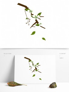 梨花白色花朵花枝花卉手绘简约风8