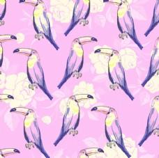 水彩鹦鹉花朵平铺图案