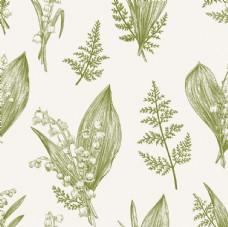 写实风线描植物图谱平铺图